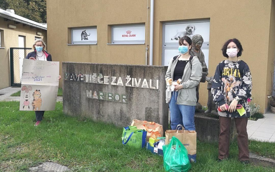 Obiskali smo Zavetišče za živali Maribor