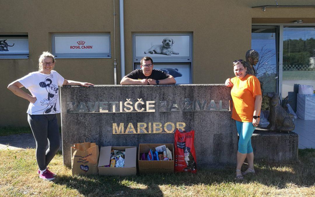 Sodelovanje z Zavetiščem za živali Maribor